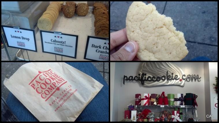 1-ATG Blog Pix - Christmas 2012-001