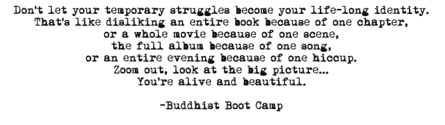 Buddhist Boot Camp FB Quote