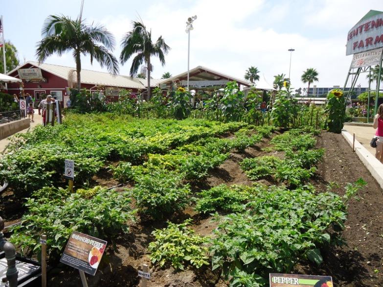 Garden ATG FINAL