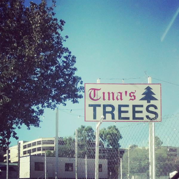 Tina's Trees ATG FINAL